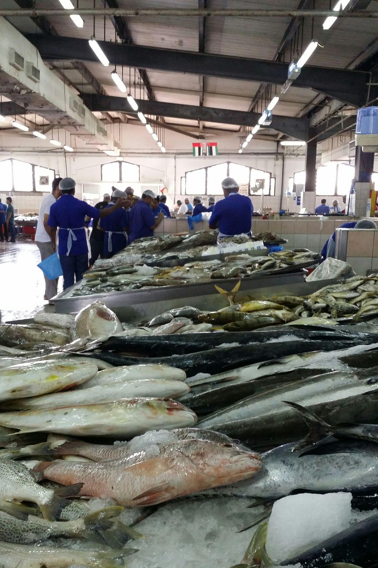 Uae,abudhabi Seafood Market Seafood Madness FishMarket Freshfish Respect For The Good Taste Eye4photography  Snapshots Of Life