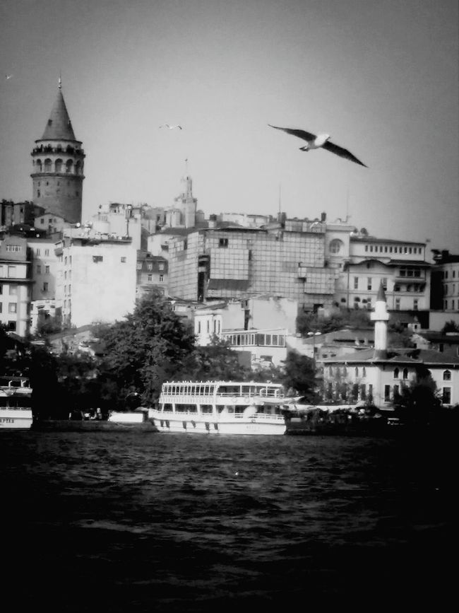 Blackandwhite Travelphotography Istanbulove Greatcity
