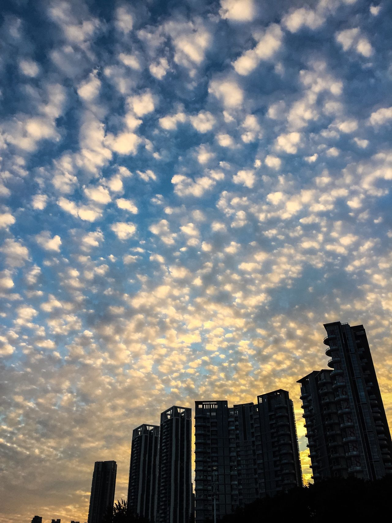 Cloud - Sky Sky City Building Exterior Architecture Built Structure Modern Skyscraper City Life No People Cityscape Low Angle View Outdoors Urban Skyline Sunset Travel BEIJING北京CHINA中国BEAUTY Zhuhai City Life Cityscape Holiday Nature Day