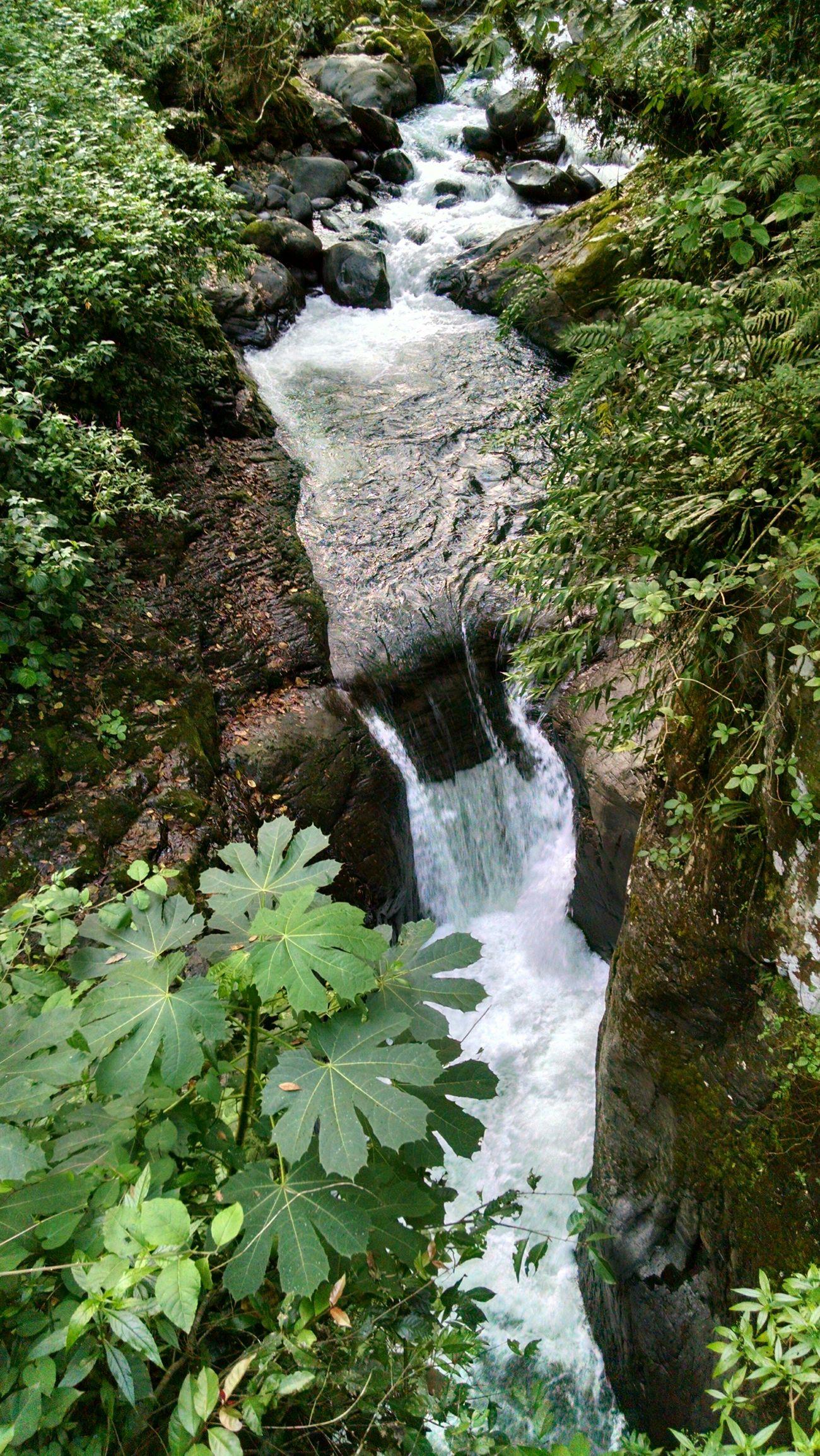Waterfall Landscape Taking Photos