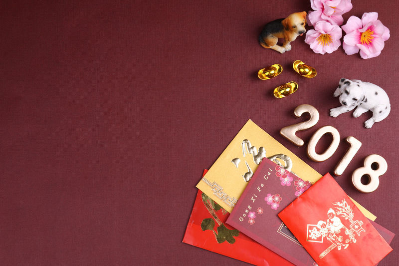 Miniature dogs with chinese new year decorations for year 2018. 2018 is year of the dog acccording to chinese zodiac calendar 2018 Angpao Greeting New Year Red Angpow Chinese New Year Culture Decorations Dog Envelope Festival Festive Packet Wish