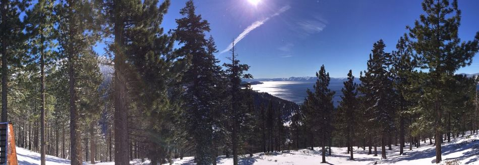 Beautiful Winter Beautiful Snow  Forest Miuntains Lake Lake View Lake Tahoe Blue Sky North It's Cold Outside