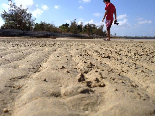 凸凹しているところは、その殆どが蟹の巣穴。風の風紋なかなぁと思って見ていると、小さな蟹の群れだったりする。 Sand Beach Tide EyeEm Best Shots EyeEm Nature Lover Life Is A Beach Sand Dune Landscape Scenics Tranquil Scene Beauty In Nature Tranquility ラムサール条約 与那覇湾 Ramsar Convention Ramsar-convention