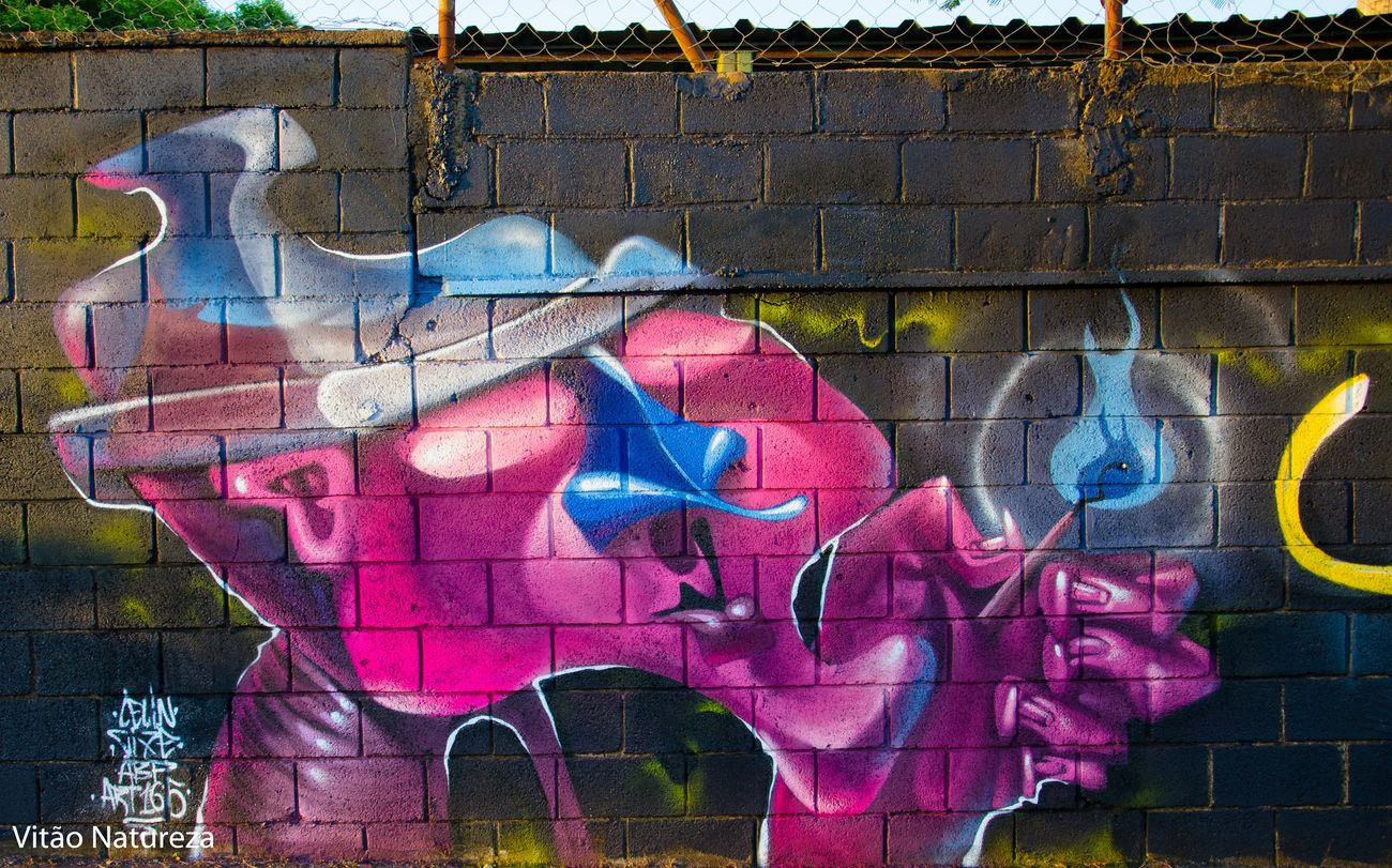 Graftti Street Art Creativity Multi Colored Documentaryphotography Olharnatural Victornatureza Fotodocumental Docmentaryphotografer Urbanarts Streetphotography Streetart Art165