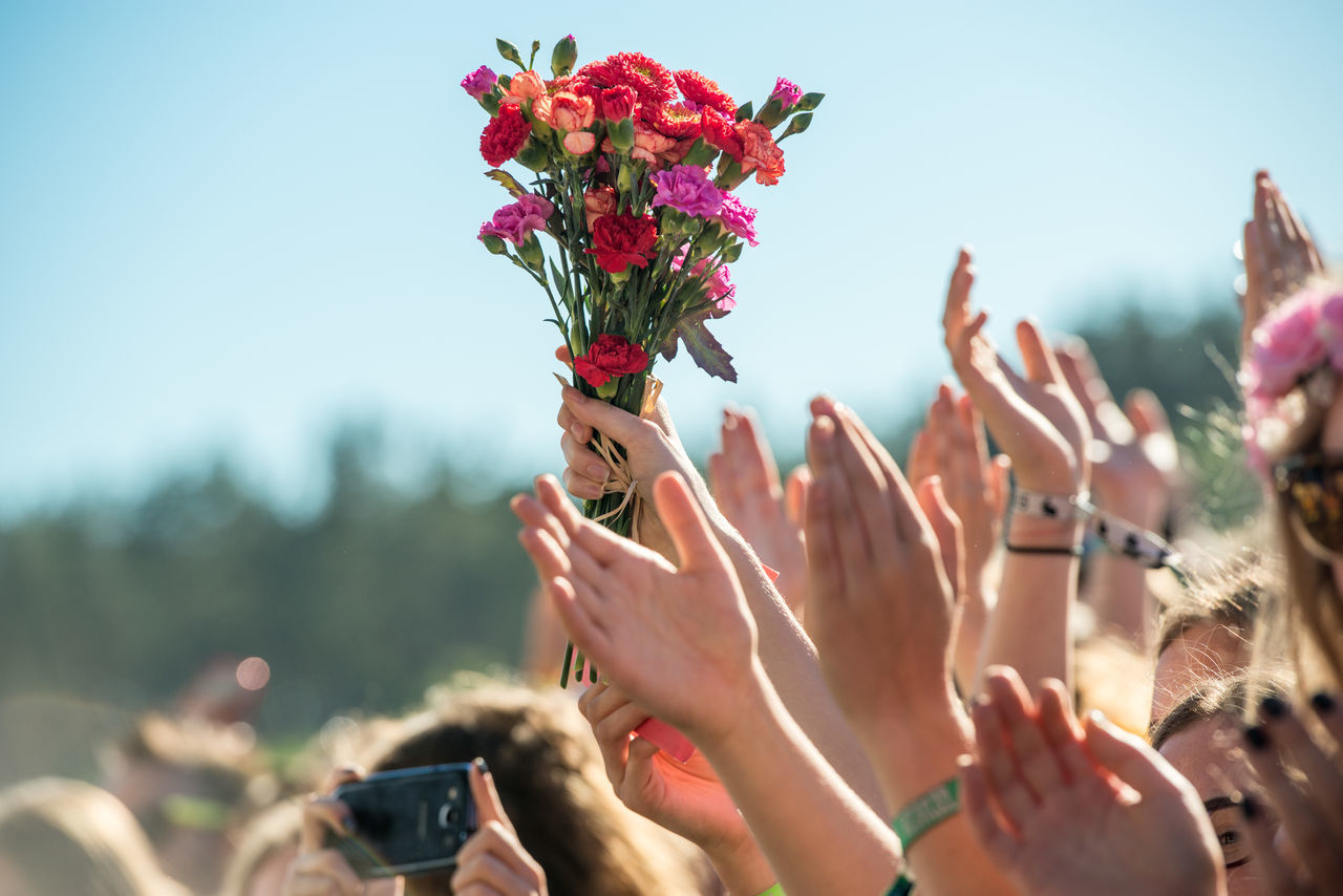 Beautiful stock photos of music festival, Arms Raised, Carnation - Flower, Cropped, Crowd