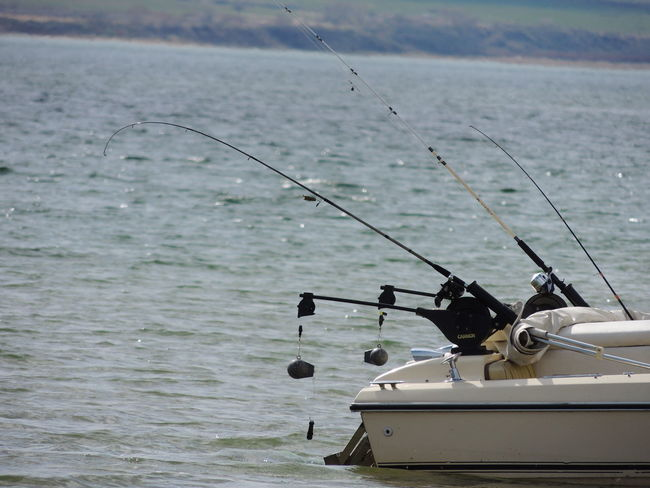 Water Fishing Tackle Fishing Outdoors Nature Boat Fishing Boat Fishing Pole Fishing Equipment Fishingtrip Bluewater Lake View Flaming Gorge, Utah Camping Trip Boating In The Lake
