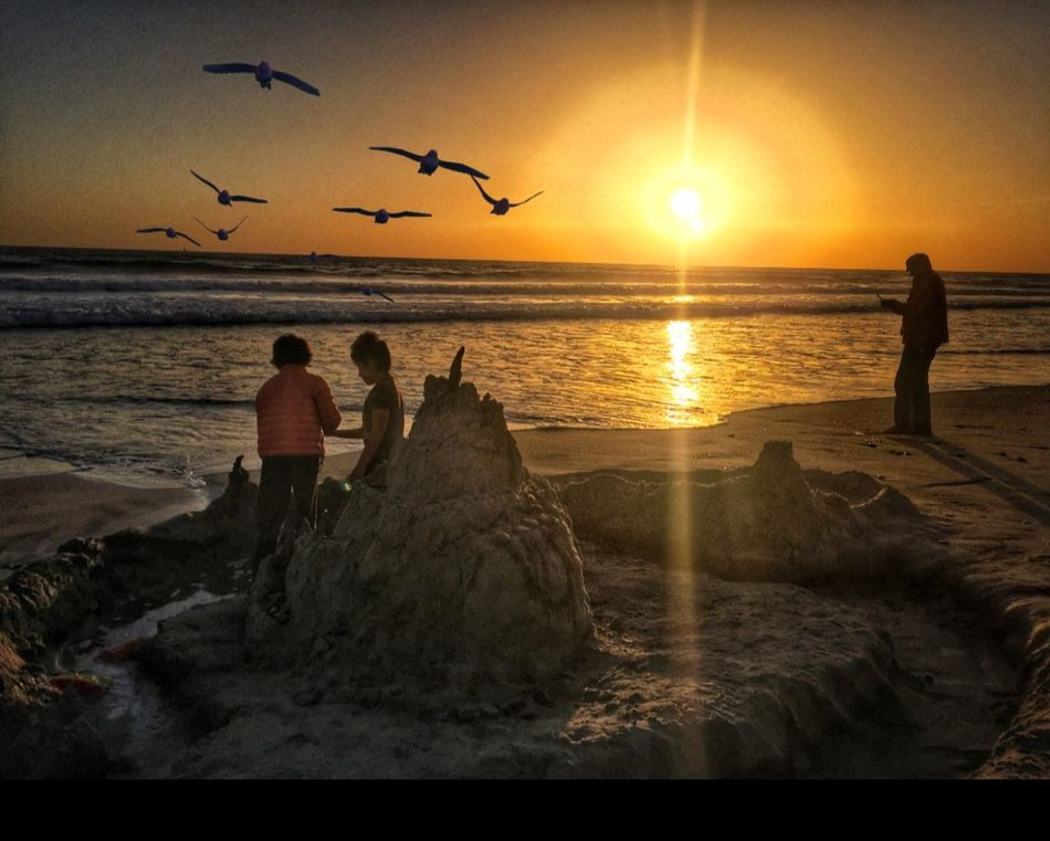 Beautiful sunset 🌅 at Oceanside . Sunset Sea Beach Real People Nature Beauty In Nature Full Length Togetherness Sand Flying Horizon Over Water Scenics Leisure Activity Two People Men Water Sun Bird Lifestyles