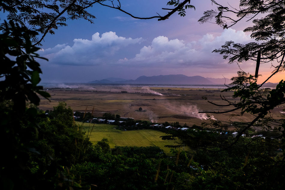 Agriculture ASIA Asia Landscape Beauty In Nature Cloud - Sky Land Landscape Nature No People Outdoors Purple Sky Rural Scene Scenics Sky Sunset Travel Travel Photography Tree Vietnam