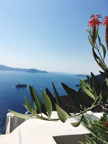 I would like to stay here forever. Santorini, Greece