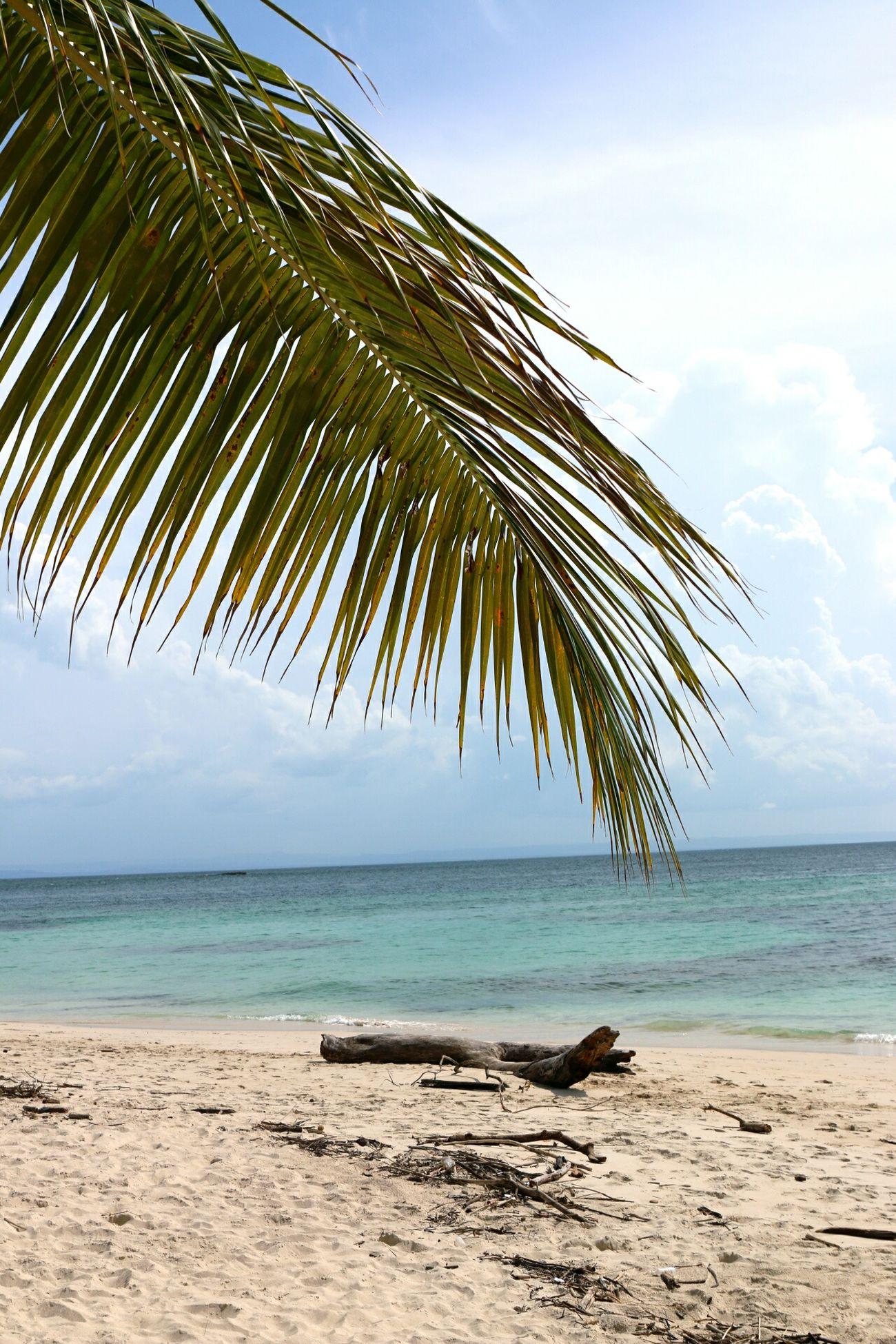 Carribean ♡  Paradise! Eyemphotography Dominican Republic Bacardi Island Cayo Levantado