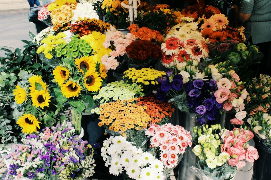 Multi Colored Flower Variation For Sale Abundance Retail  Day No People Flower Market Freshness Choice Large Group Of Objects Fragility Market Flower Shop Outdoors Close-up Flower Head Colors Taking Photos Lisboa Portugal VSCO EyeEm Portugal EyeEm Best Shots