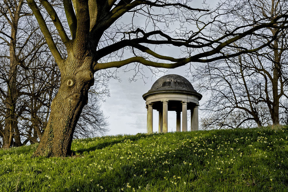Temple OF Aeolus At Kew Gardens II Architecture Bare Tree Beauty In Nature Built Structure Cloud Cloud - Sky Day Field Grass Grassy Green Color Growth Hill Side Views Landscape Lawn Nature No People Outdoors Plant Scenics Sky Tranquil Scene Tranquility Tree