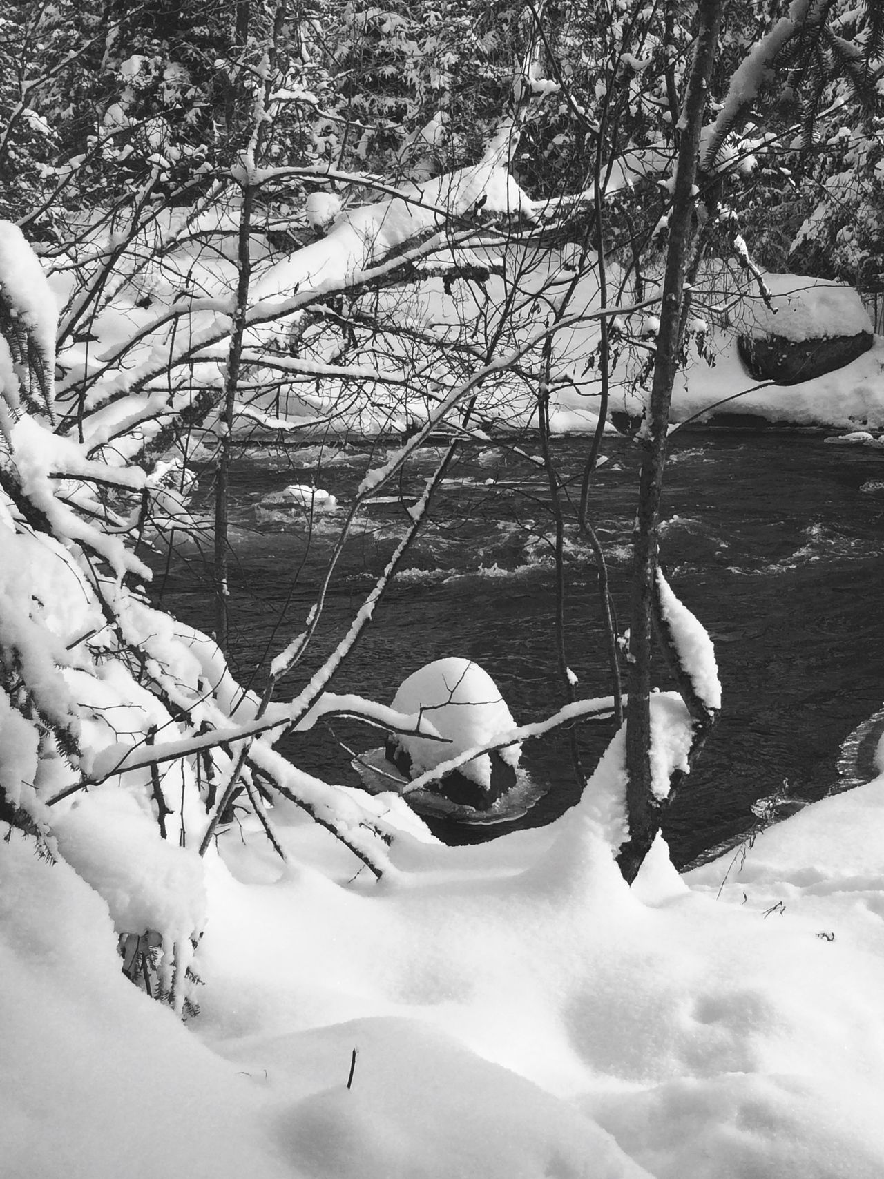 It's Cold Outside Snow Canadianwinter River Ontario Canadiannature Kenora Canadian Shield  Blackandwhitefilter Rushing River Provincial Park