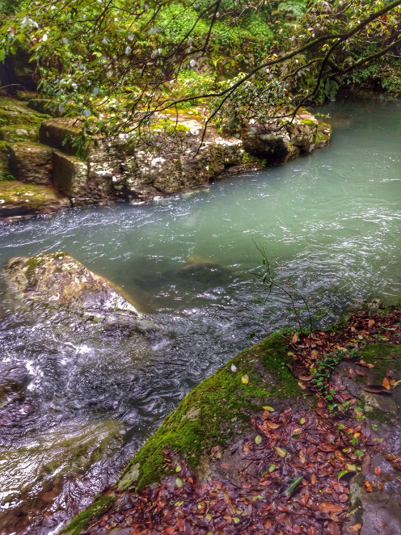 Looks like a great pool to take a dip! Beauty In Nature Creekside Trail Mountains And Valleys Chasing Waterfalls Photography #photo #photos #pic #pics #tagsforlikes #picture #pictures #snapshot #art #beautiful #instagood #picoftheday #photooftheday #color #all_shots #exposure #composition #focus #capture #moment In Nagasaki, Perfecture Japan Landscape