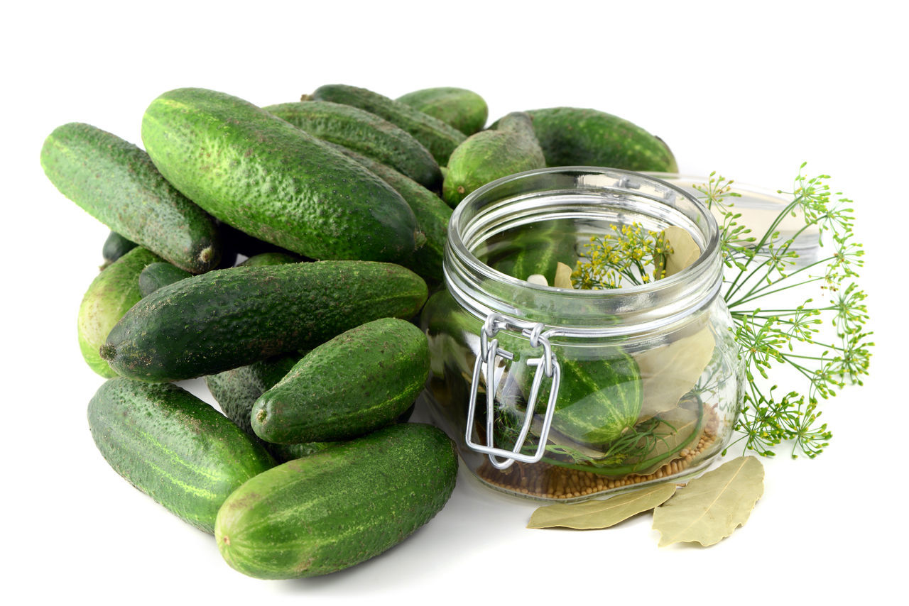 homemade cucumbers in jar glass with herbs like dill and onions. Arrangement Cucumber Food Food And Drink Freshness Green Color Healthy Eating Vegetable Isolated Jar Glass Einweckglas Herbs Dill Studio Shot White Background Saure Gurken Cucumbers Cucumbersalad