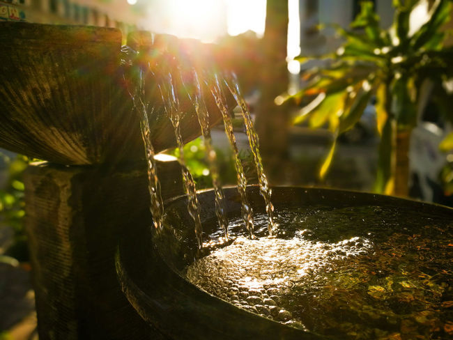 Morning knitted with the ray of life Morning Fountain Water Hidden Gems