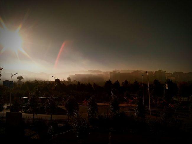 Night Illuminated Motion Thunderstorm Outdoors Stadium No People Tree Sky Nature