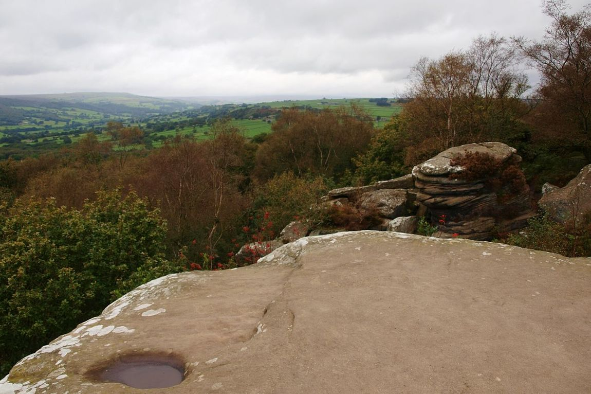 Landscape Rock Formation Rocks Tree Fields Moors Scenics Sky Cloud Autumn is coming at Brimham Rocks Yorkshire