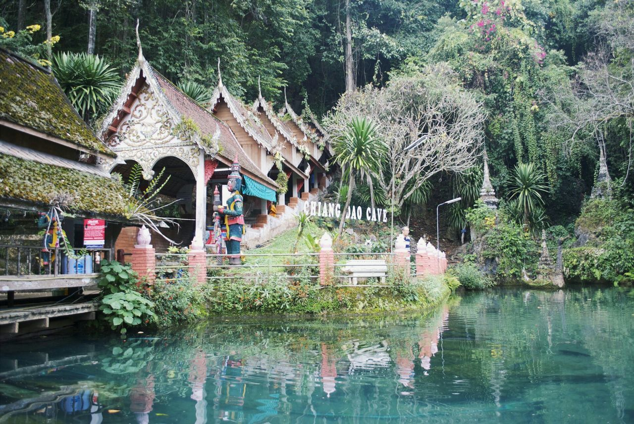 Chiang Dao Cave Thailand Wanderlust
