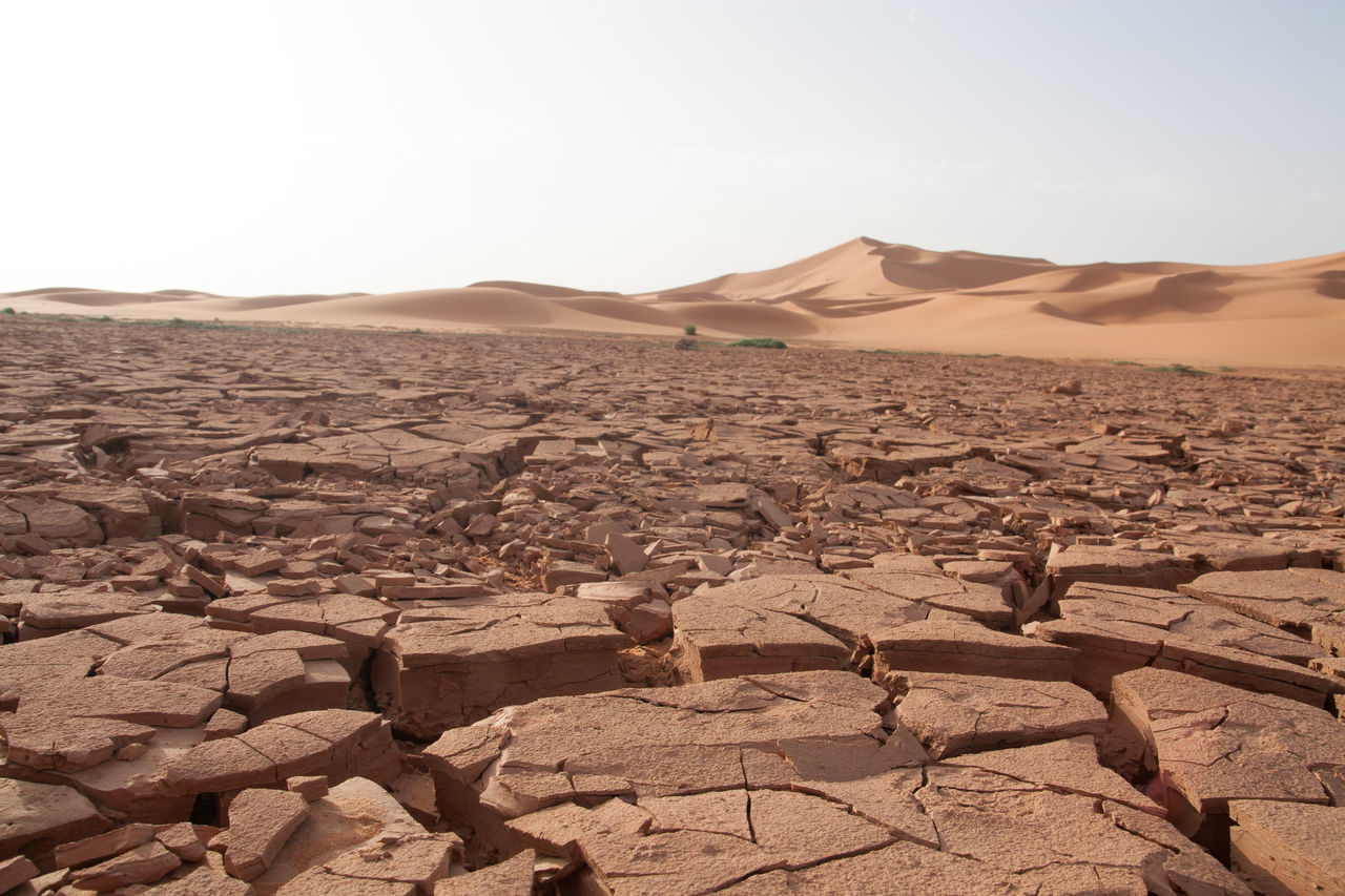 Beautiful stock photos of desert, Arid Climate, Barren, Cracked, Day