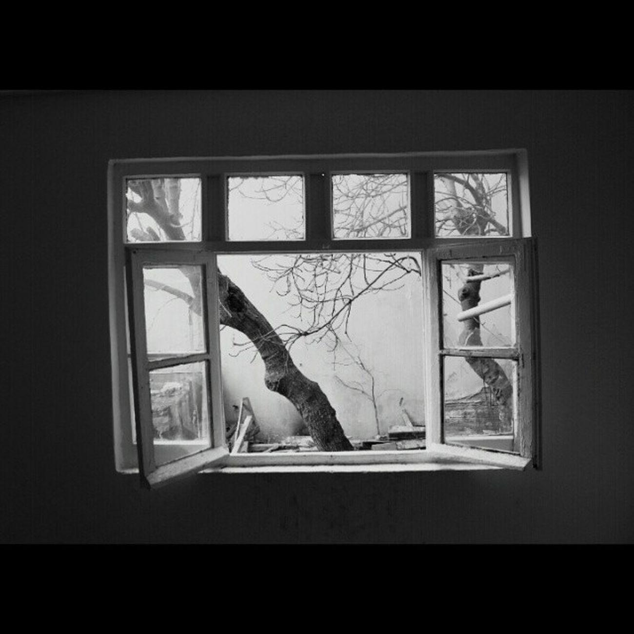 İçeriden... Balat Pencere