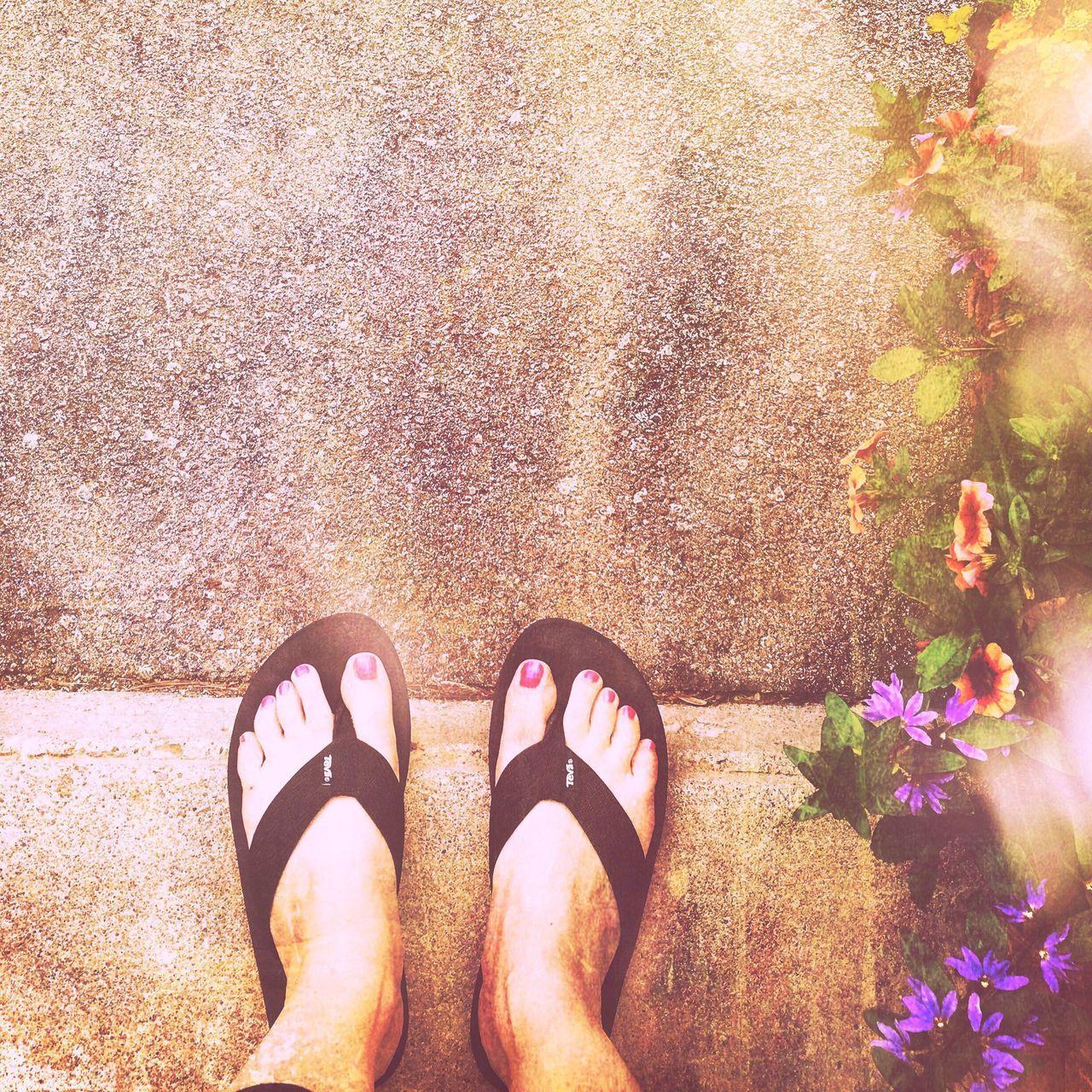 Summer #summertime #sun #TagsForLikes.com #hot #sunny #warm #fun #beautiful #sky #clearskys #season #seasons #instagood #instasummer #photooftheday #nature #TFLers #clearsky #bluesky #vacationtime #weather #summerweather #sunshine #summertimeshine Season  Sandalsandtoes Season