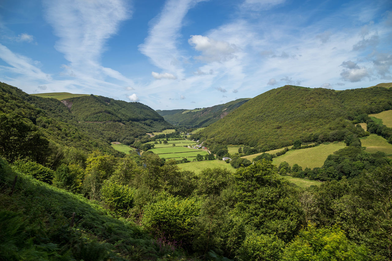 Beautiful Ceredigion landscape... Beautiful Day Blue Skies British Countryside Ceredigion Cloud - Sky Day Devils Bridge Forrest Hill Hills Hillside Landscape Landscapes Mountain Nature Nature Outdoors Sky Summer Day Summers Day Sunny Day Train Ride Trees Wales Welsh Countryside