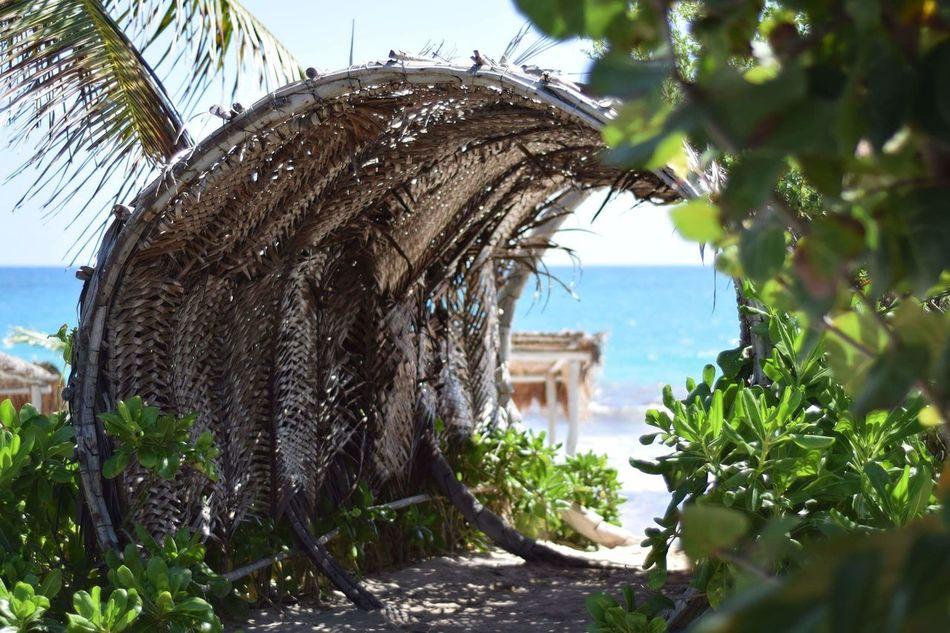 Nofilternoedit Mexico Tulum , Rivera Maya. Tropicaltimemachine EyeEmNewHere Paradise On Earth Beatifulday