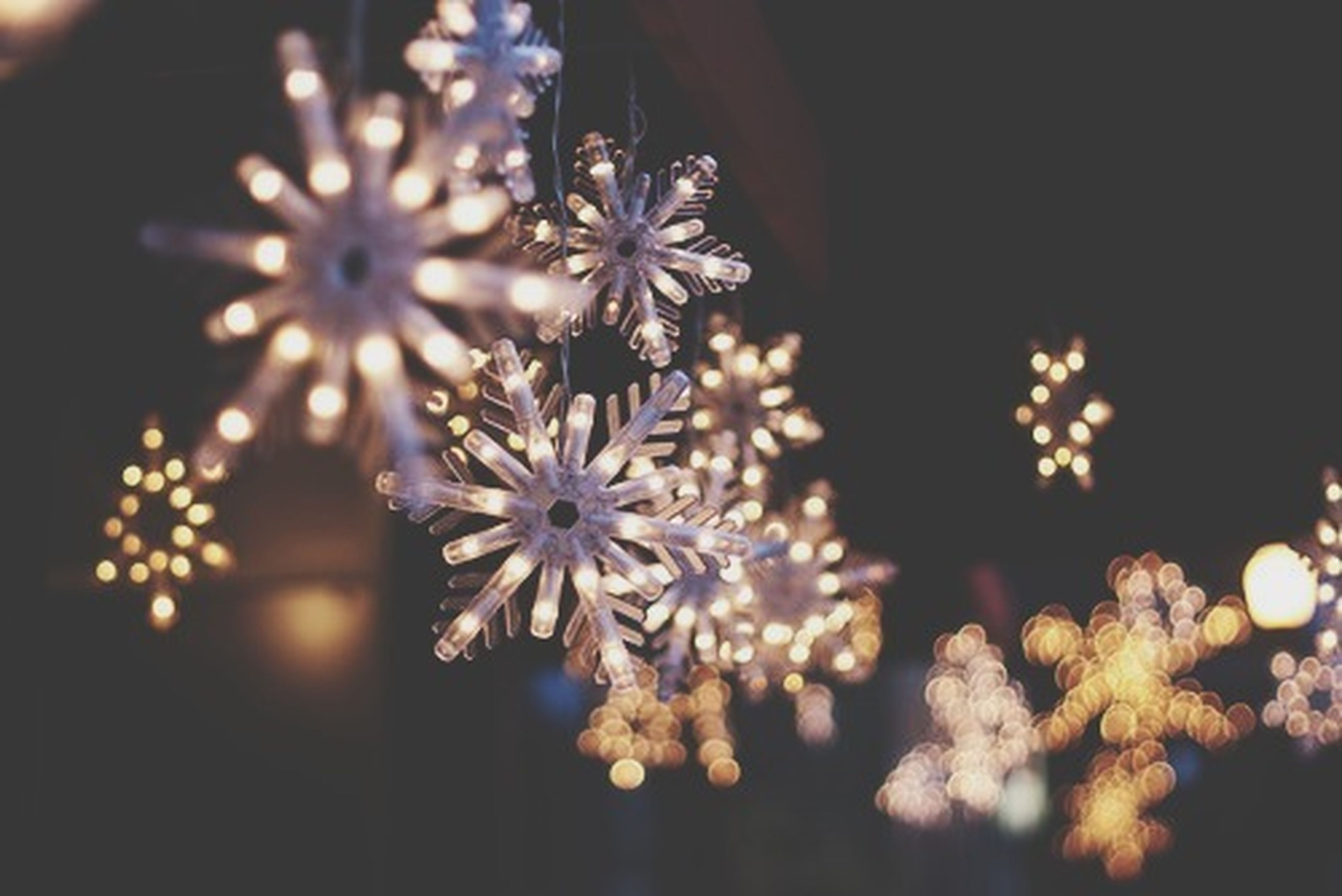 illuminated, decoration, night, indoors, close-up, focus on foreground, lighting equipment, flower, tradition, no people, celebration, religion, hanging, lit, selective focus, decor, glowing, art and craft, reflection, light