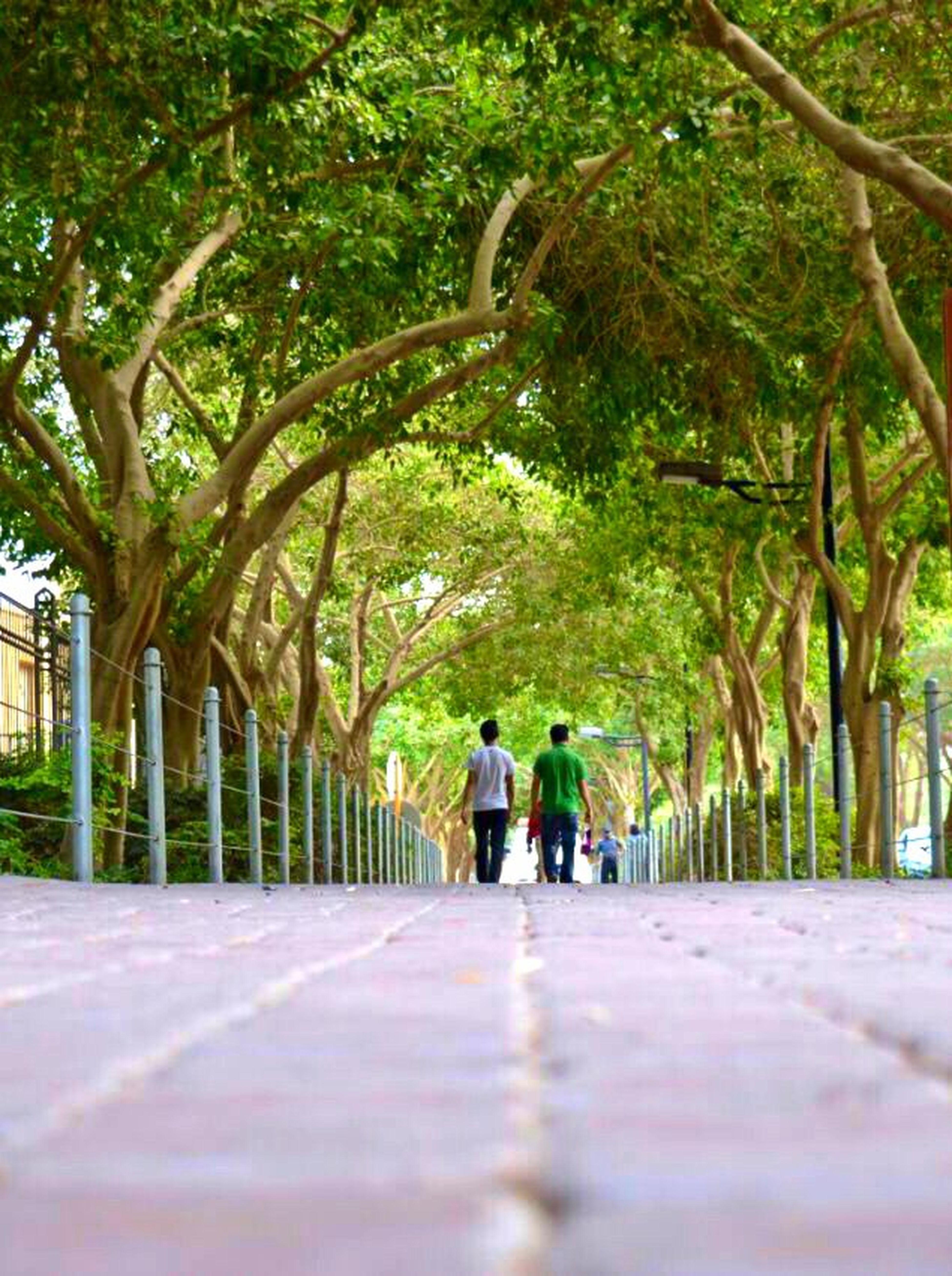 تصويري  ممشى المشي_قمميل رياضه