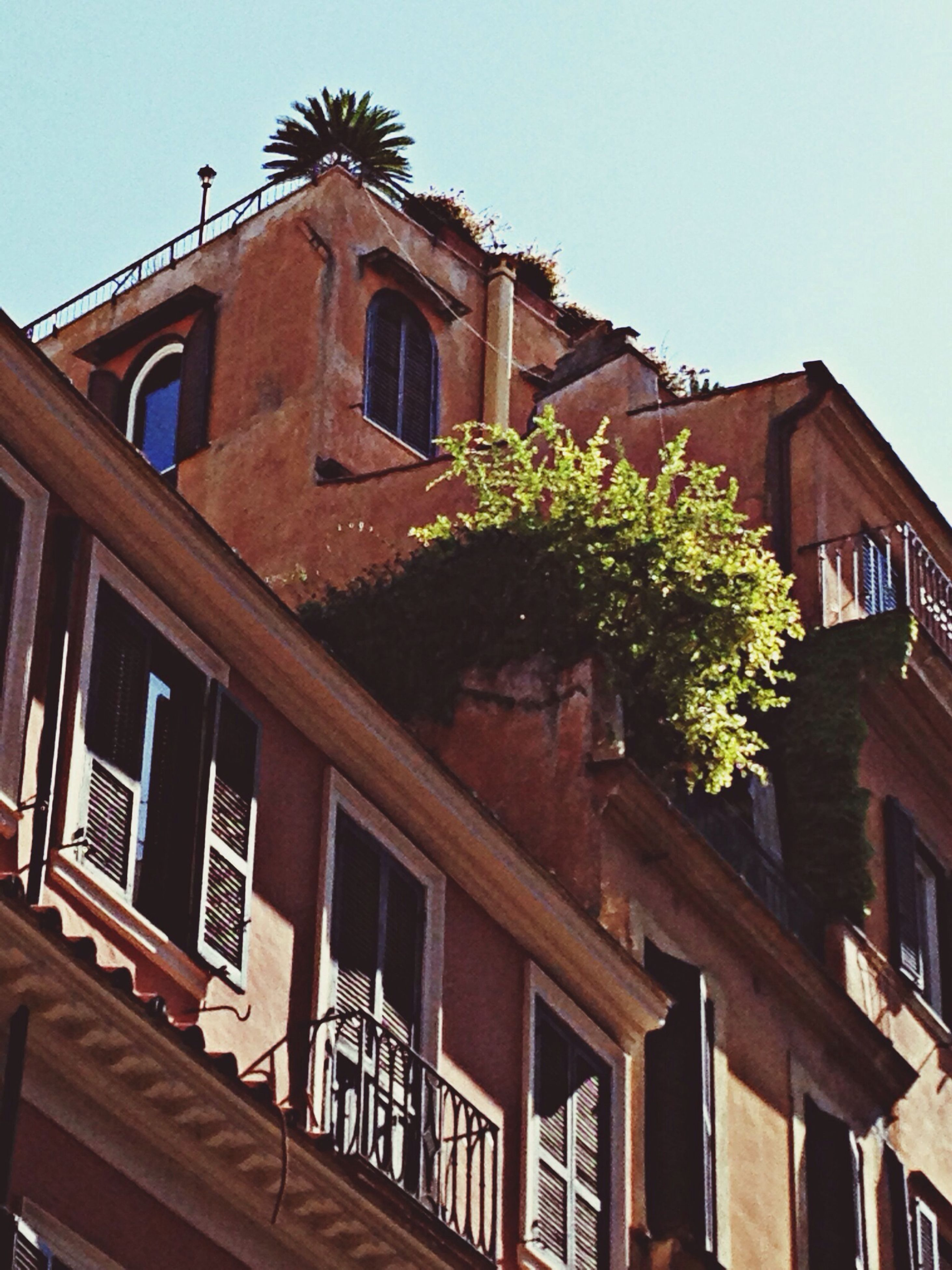 architecture, building exterior, built structure, low angle view, residential building, residential structure, window, house, clear sky, balcony, building, day, roof, outdoors, exterior, sky, no people, tree, facade, city