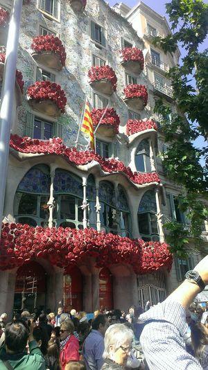 Dia de Sant Jordi, Barcelona