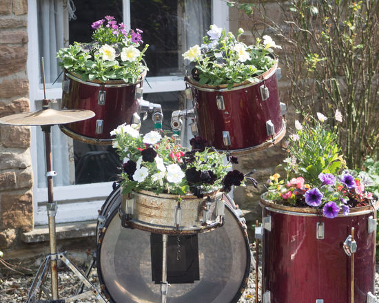 drum kit with flowers Beauty In Nature Day Drumkit Flower Fragility Freshness Growth Nature No People Outdoors Plant Potted Plant Window Box