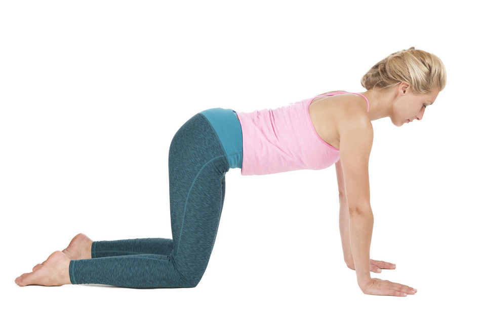 Side full body view of a young blond woman at the Yoga exercise Majariasana (the cat) down looking with straight back on a white background. Adult Adults Only Exercising Flexibility Full Length Healthy Lifestyle Lifestyles Majariasana One Person One Woman Only One Young Woman Only Only Women People Sport Sports Clothing Studio Shot White Background Young Adult