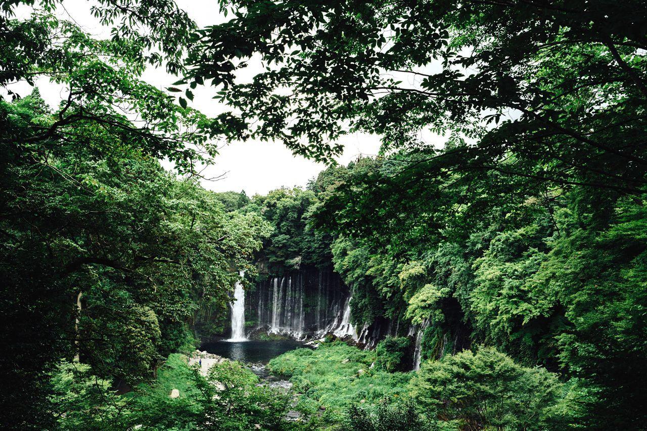 Water Falls Waterfalls Nature Mt Fuji, Japan Green Landscape EyeEm Best Shots - Landscape Clouds And Sky Shizuoka,japan Shiraitonotaki Falls Hot Day Japan Taking Photos Green And Water July 2016 EyeEm Nature Lover EyeEm Gallery