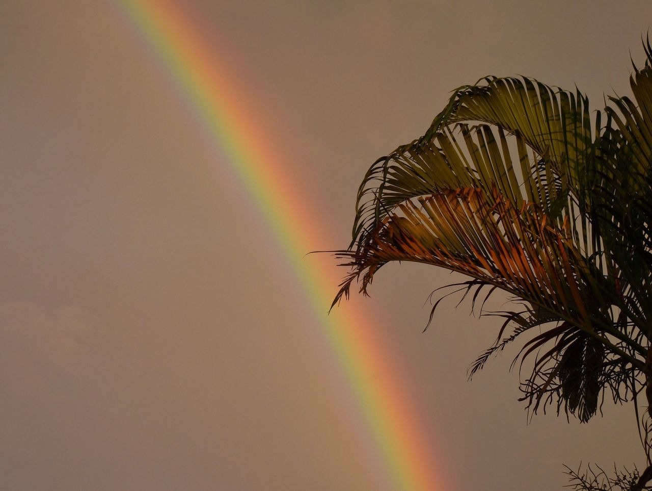 Beautiful stock photos of rainbow, Brazil, Clear Sky, Colorful, Cropped