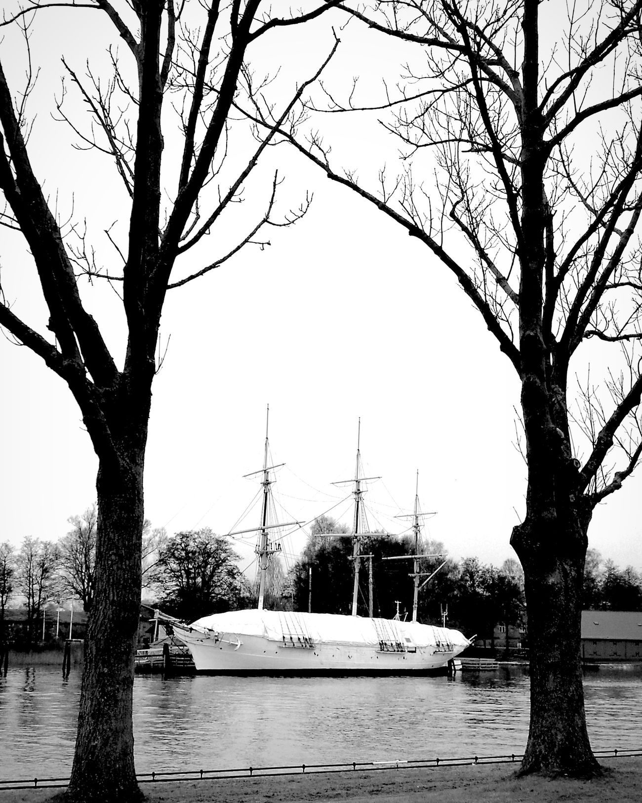 Sleeping beauty... Tree Water Nautical Vessel Tranquility Outdoors Sky Yachting Sailboat No People Travel Destinations Day Beauty In Nature Leisure Activity Life In Motion Lifeontheroad Peace And Quiet Relaxation Peaceful View Branch Black & White Norway🇳🇴