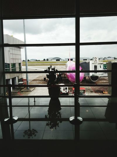Because it's Purple Airplane fly again Fly Alone Waiting For The Flight Excitements Find Something Weird Reflection Long Goodbye Business Stories