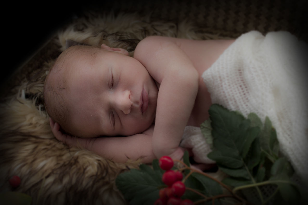 sleeping, baby, babyhood, childhood, innocence, eyes closed, indoors, one person, fragility, lying down, cute, bed, relaxation, real people, newborn, comfortable, close-up, flower, babies only, day, people