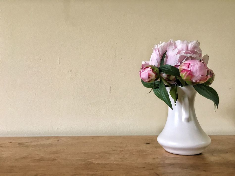 Beautiful stock photos of muttertag, flower, vase, wall - building feature, freshness