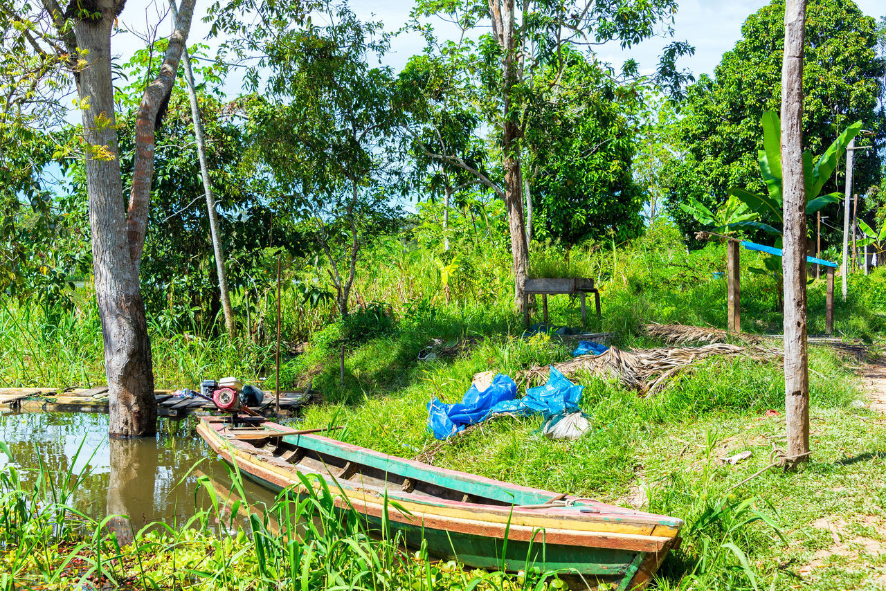 Canoe on the shore of the Yanayacu River in the Amazon rain forest near Iquitos, Peru Amazon Amazonas Canoe Canoes Forest Green Iquitos  Jungle Nature Peru Rain Forest Rainforest Rural Tourism Travel Travel Destinations Tree Trees Tropical Village