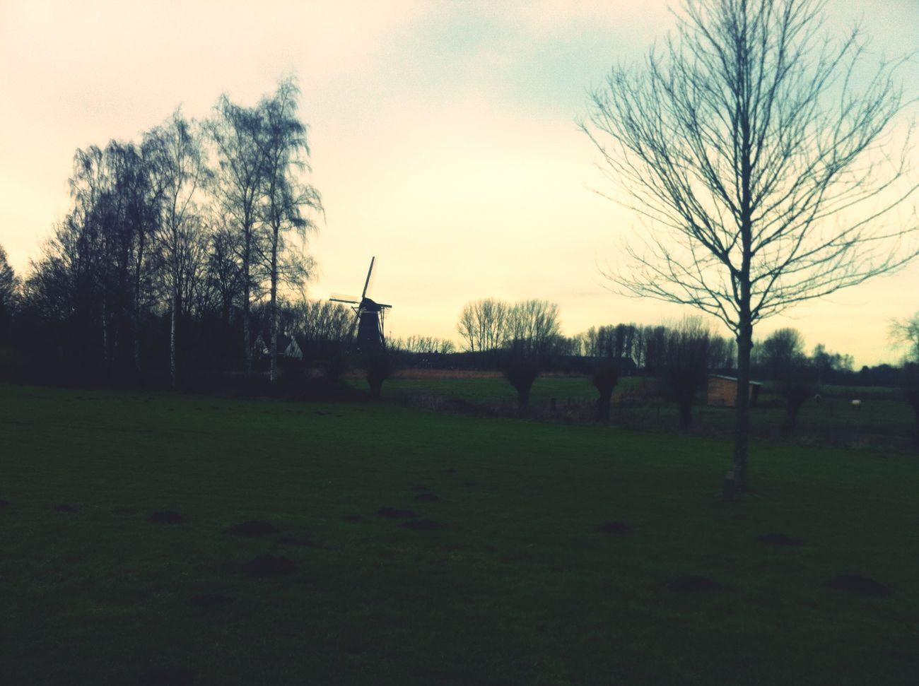 Nuenen Paysage Holland ♡