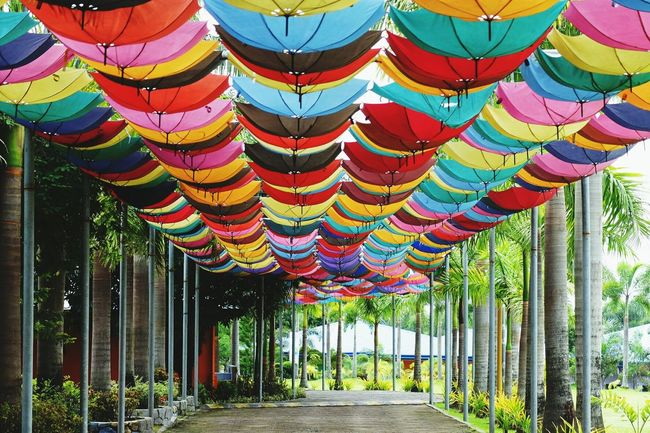 Multi Colored No People Outdoors Hanging Horizontal Day Sky Grass Nature Architecture Color Colors Colorful Color Palette Colorsplash Color Explosion Colors and patterns Umbrella Umbrellas Unbrellas Color Photography Celebration Togetherness Cultures Tradition