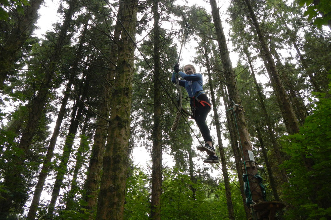 Brave Girl High Wire In The Forest