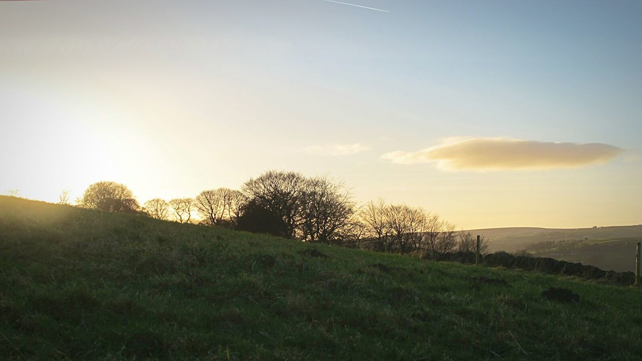 Grass Sunset Tree Sky Nature No People Outdoors Day Fine Art Photograhy Eyeemphotography Winter Valleyside EyeEmbestshots. Cold Temperature Tranquil Scene Outdoors Field Scenics Grass Landscape Green Color Growth Beauty In Nature Agriculture Tree Tranquil Scene