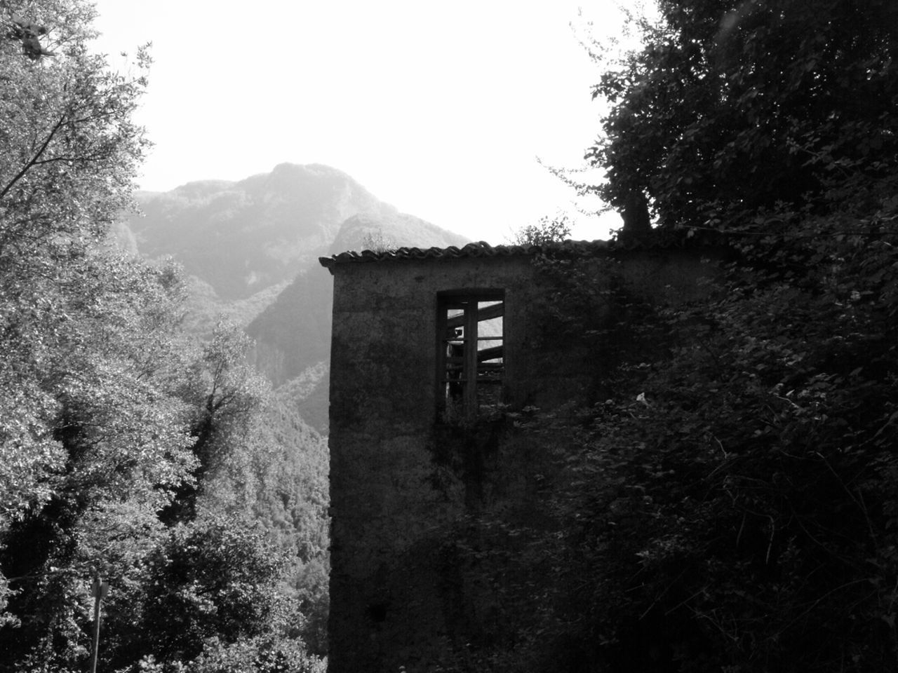Abandoned Architecture Beauty In Nature Building Exterior Built Structure Clear Sky Day Growth Mountain Nature No People Outdoors Plant Sky Tree Orsomarso Fiume Argentino Calabria (Italy)