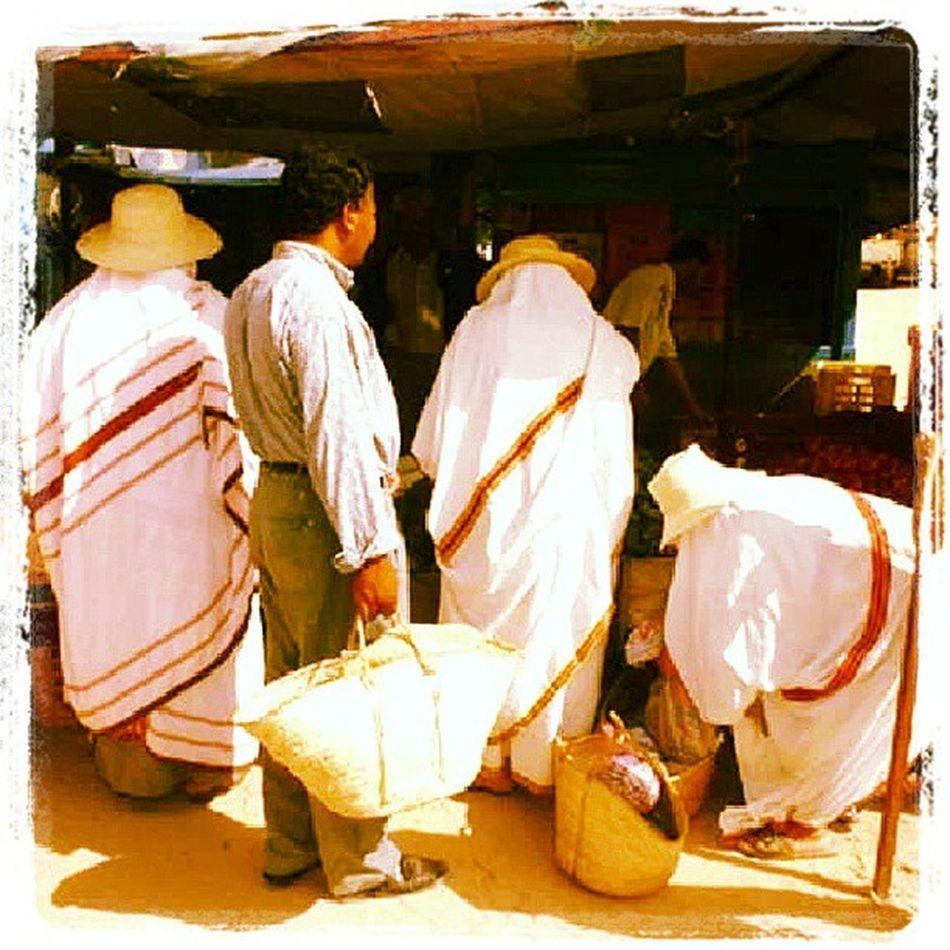 Midoun Market March é Djerba  Tunisie Tunisia Friday Vendredi