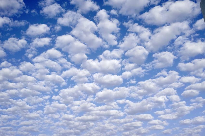 Blue sky and fleecy clouds Backgrounds Beauty In Nature Blue Blue Sky White Clouds Cloud - Sky Cloudscape Cumulus Cloud Day Dramatic Sky Fleecy Clouds Fluffy Heaven Nature No People Outdoors Scenics Sky