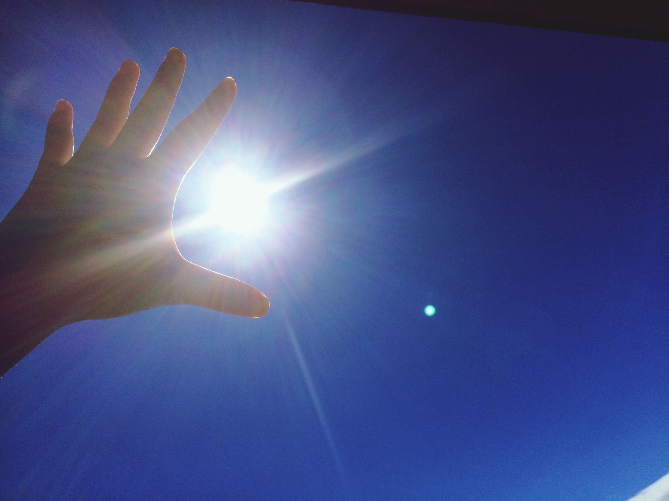 blue, person, part of, sun, sunlight, cropped, lifestyles, leisure activity, human finger, low angle view, sunbeam, lens flare, unrecognizable person, holding, personal perspective, one animal, sky