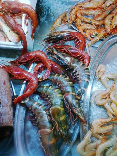 Seafood Food And Drink Food Freshness Prawn Market Fish Market Raw Food No People Lobster Ice For Sale Healthy Eating Shrimp Indoors  Day Close-up